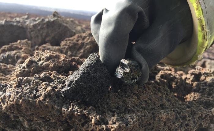 Cursed Rocks and LavaBombs